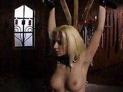 BDSM Blondes