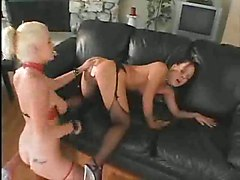 pussy pussylicking lesbian stockings fishnet fetish brunette blonde big tits couch dildo toys anal hardcore spanking ass close up groupsex threesome deepthroat blowjob face fuck gagging rough sex small tits riding rubbing masturbation squirting fingering